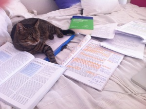 Hausarbeit schreiben.