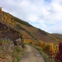 Rotweinwanderweg